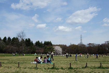 2008-03-29-07.JPG