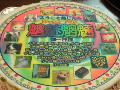 2008-04-19-09.JPG