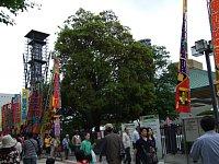 2008-05-04-04.JPG
