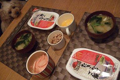 2009-01-31-04.JPG