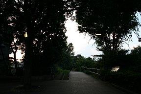 2010-07-16-02.JPG