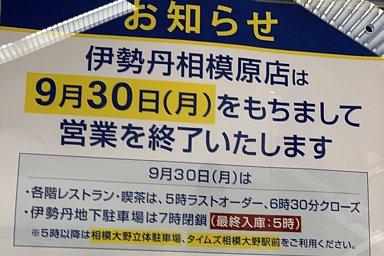 2019-09-29-03.JPG